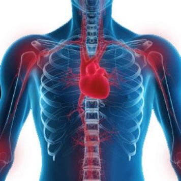 ревматическое поражение сердца